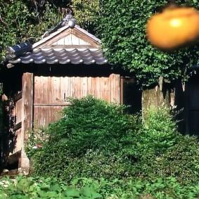 2009年当時の笹野大日堂(NHK にっぽんこころの仏像より)